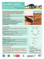 Les crédits carbone - Un moyen efficace pour aller plus loin dans la valorisation des terres pastorales restaurées